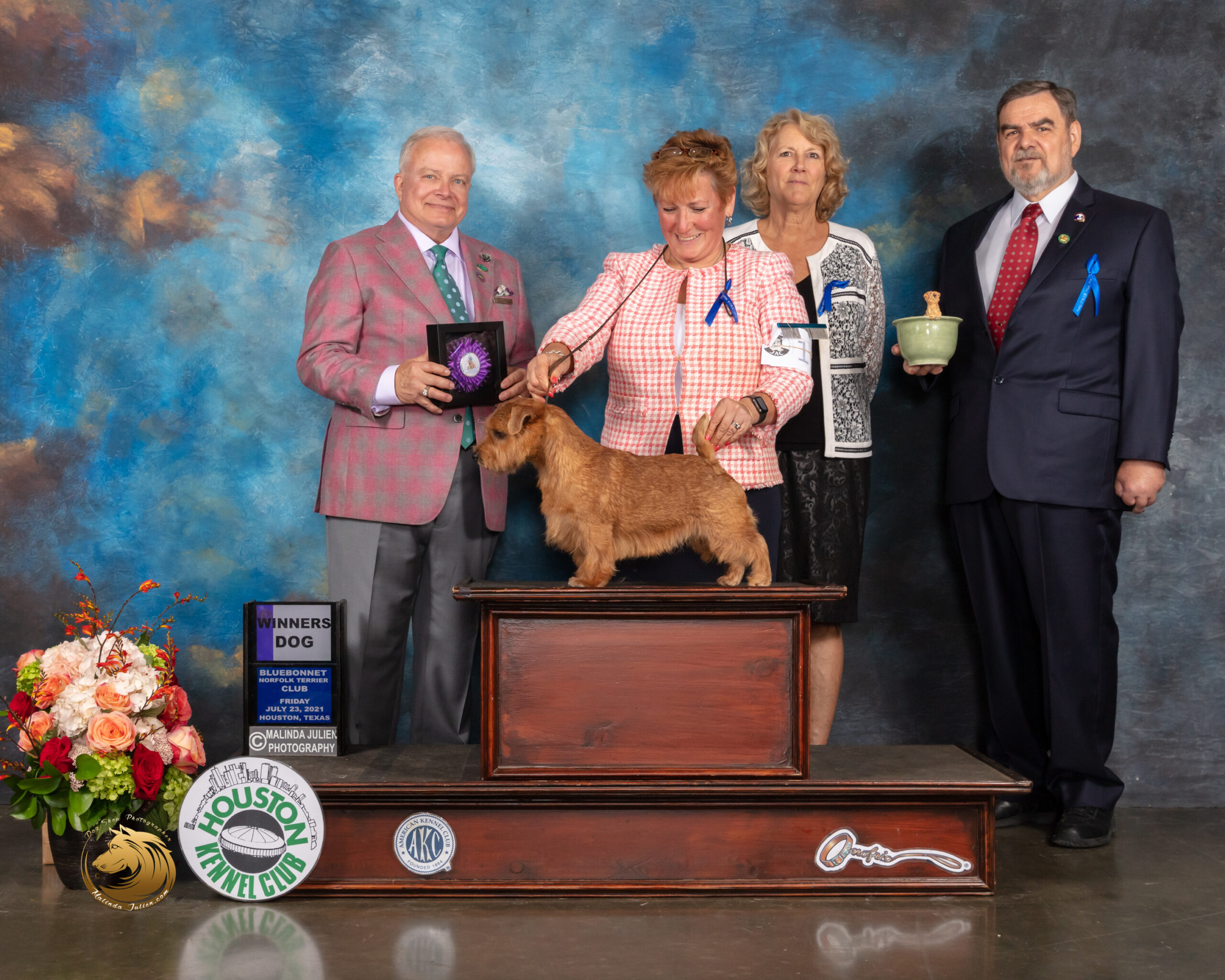 Norfolk_Terrier_#11_Fri_WD_Judge_Dennis_Mccoy-MMJ_0652-HOUSTON21-HR3-(ZF-10718-03024-2-003)